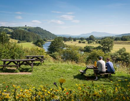 Top Summer Picnic Spots