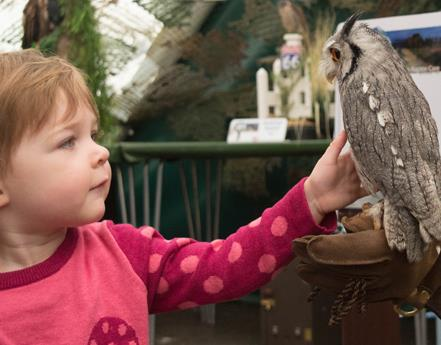Animal Magic returns to WWT Martin Mere Wetland Centre