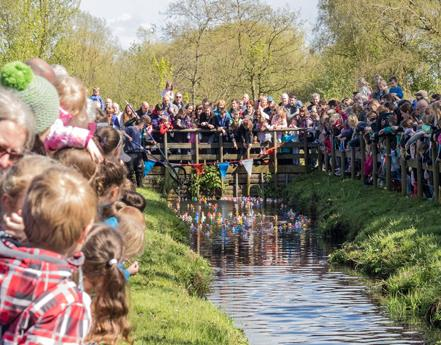 5th annual Duck race at Martin Mere