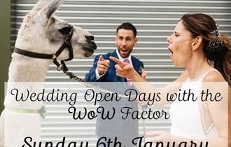 Quirky Wedfest Wedding Open Day