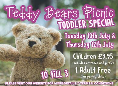 Teddy Bears Picnic at Thornton Hall Country Park