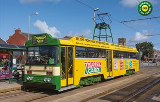 May Day Holiday Weekend Heritage Tram Tours GOLD