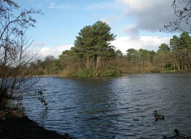 Cuerden Valley Park