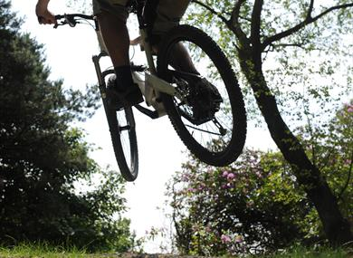 Billinge Wood Mountain Bike Trails