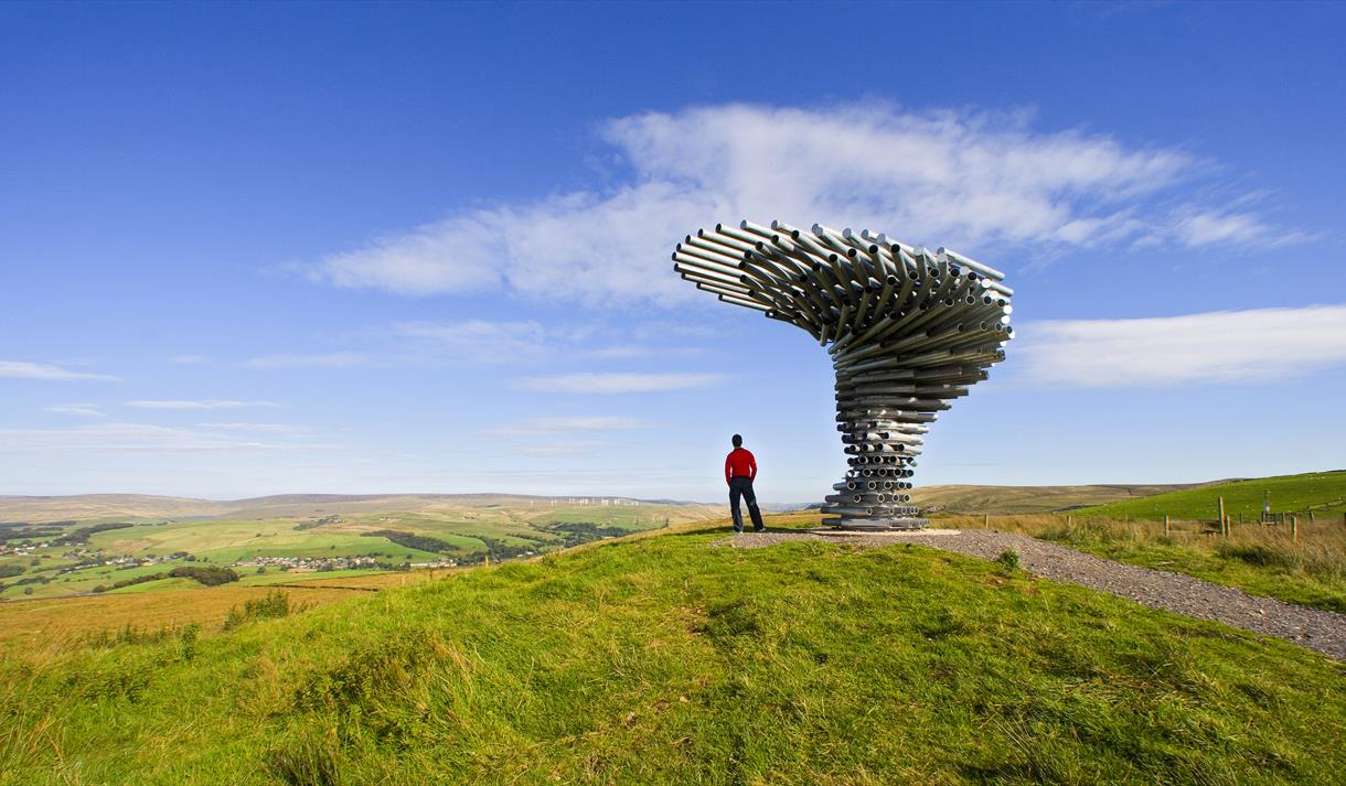 Singing Ringing Tree - Panopticon