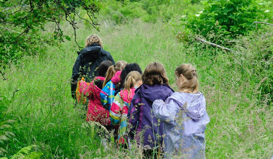 Free Family Nature Events - Flower Power