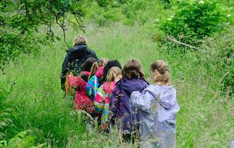Free Family Nature Events