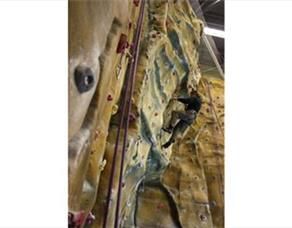 Outdoor Revolution - Climbing Walls