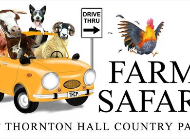 NEW Farm Safari at Thornton Hall Country Park