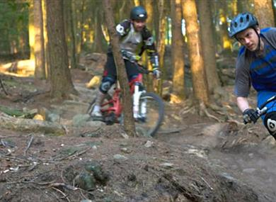 Healey Nab Mountain Bike Trails
